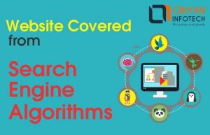 How to Give Your Website a Complete Cover from Search Engine Algorithm